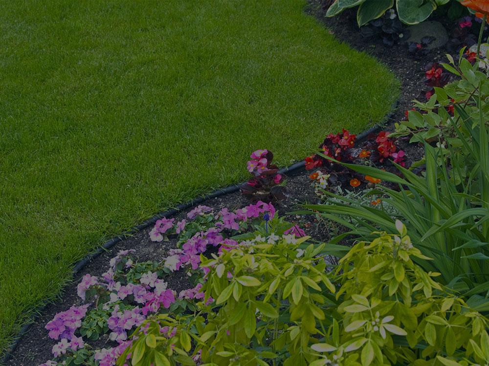 Canton Garden Design